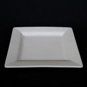 white square 11in dinner plate rental