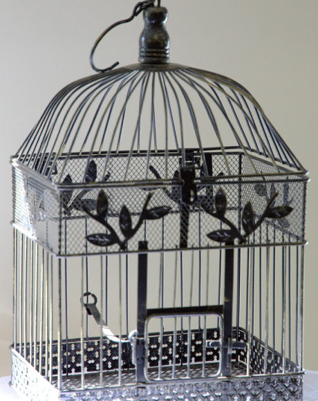 Wedding-Birdcage