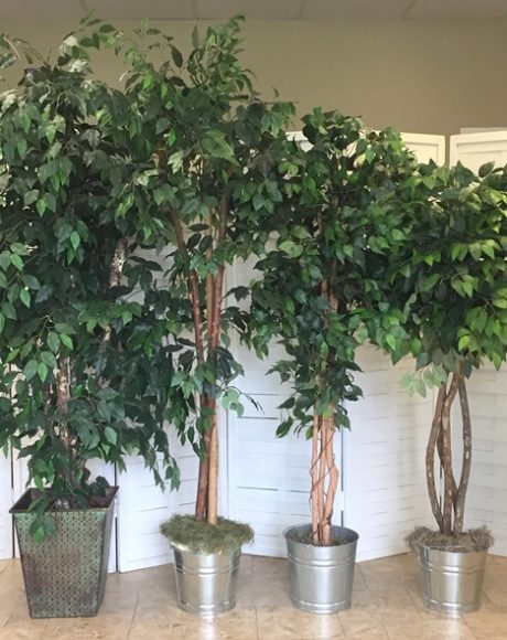 fake faux ficus and bamboo trees